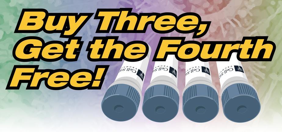 Buy Three, Get the Fourth Free!