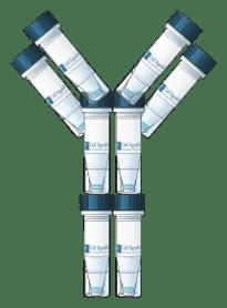 Sample tubes