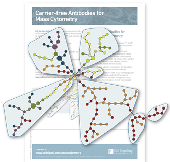 carrier-free-antibodies-3